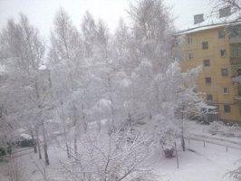 http://supergeterodin.narod.ru/tex/0000/ural.jpg
